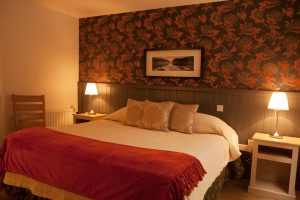 Butler Court Guest Accommodation Kilkenny