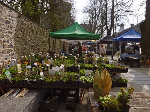 Farmers Market Kilkenny