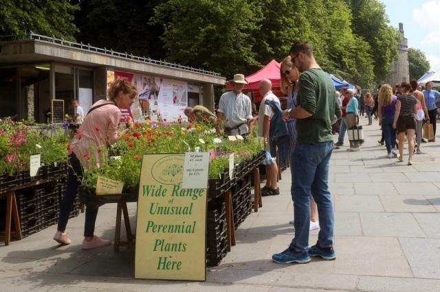 Farmer's Market Kilkenny